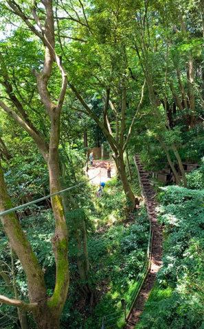 リゾナーレ熱海 森の空中散歩